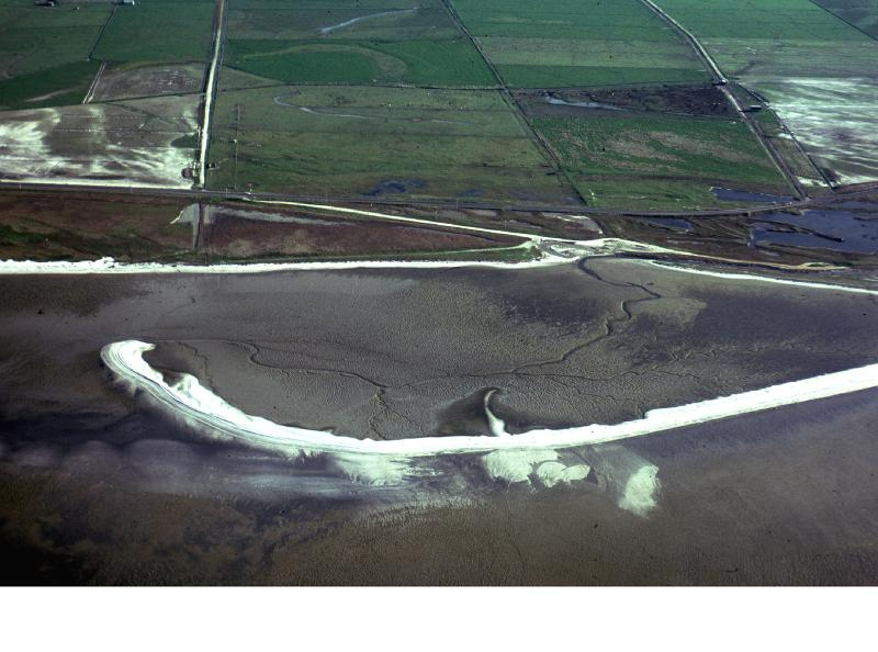 Image #A new shell spit (chenier) is forming across the intertidal flats (1983).