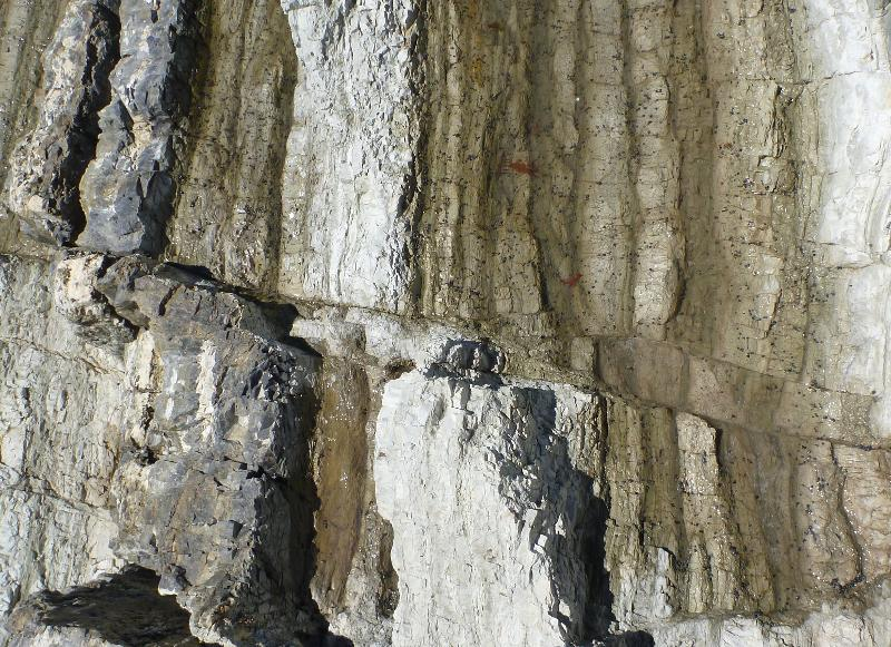 Image #Fault offsetting strata at Chancet Rocks, J.Thomson / GNS Science