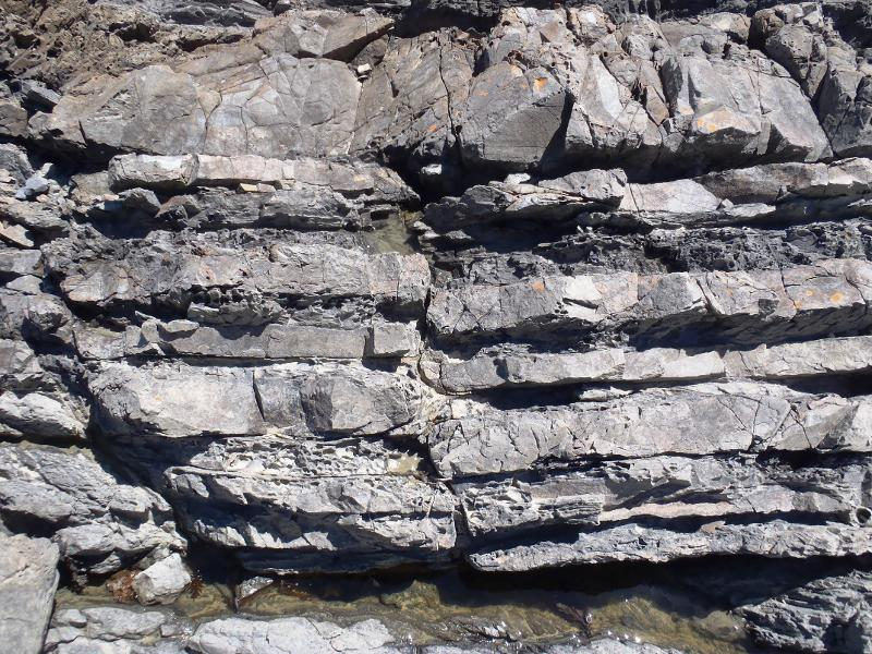 Image #Faulted Bedrock at Titahi Bay, Photo J.Thomson @ GNS.Science